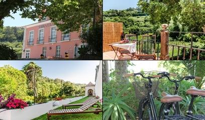 Sarrazola House - Colares Sintra
